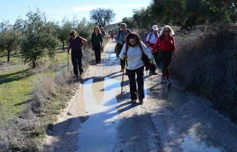 El Camino Mozárabe entre Alcaudete y Baena encandiló al Colegio de Dentistas de Jaén | Camino Mozarabe - Via de la Plata | Scoop.it