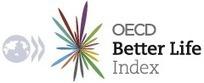 OECD Better Life Index | Employabilité | Scoop.it
