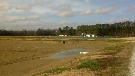Aquaculture in North Carolina: White Rock Fish Farm « Southern Fried Science | Aquaculture | Scoop.it