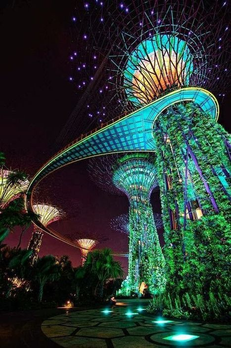 15 Strange Buildings you'd love to see - Gardens by the Bay, Singapore - Architecture Daily | Strange days indeed... | Scoop.it