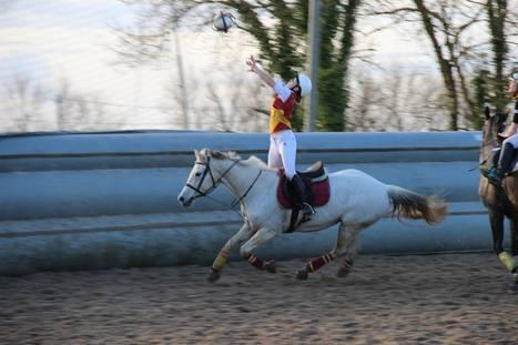 Horse ball à Blanquefort avec Nicolas Gueroult   horse ball   Scoop.it