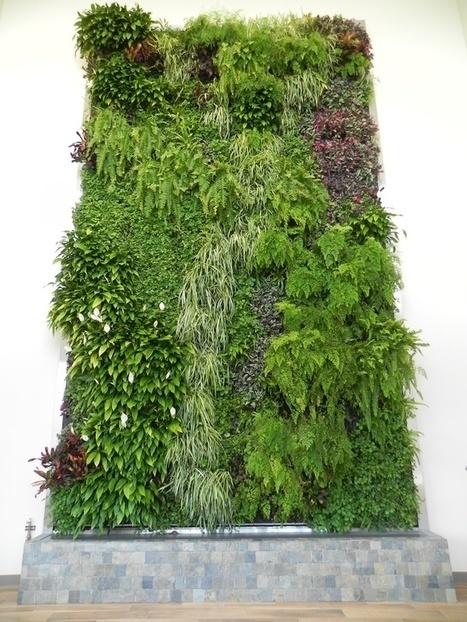 Photos: A Gallery of Green Walls | Jardines Verticales y azoteas verdes. | Scoop.it