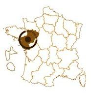 Semaine du développement durable dans le 44 du 1er au 7 avril.   Les petits débrouillards, Pays de la Loire   Agenda de la Culture Scientifique et Technique   Scoop.it