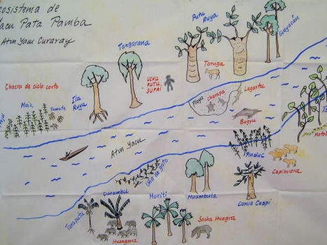 ArcWatch   Keepers of the Rain Forest   Everything is related to everything else   Scoop.it