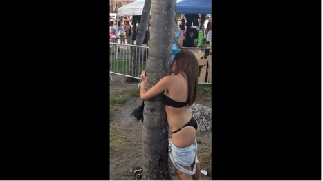 This Girl Is Attracted To A Tree (NSFW) | News Pop | Scoop.it