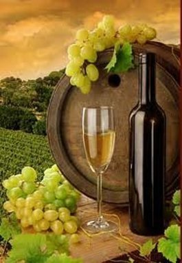 Stagecoach Wine Tours Santa Ynez (CA): The County's best wine tour! Certificate of Excellence | Santa Barbara Wine Tours | Scoop.it
