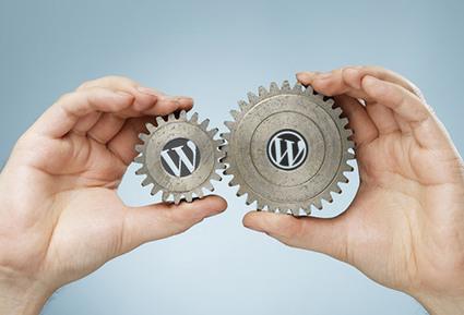 Building custom WordPress websites to meet your online branding demands | Wordpress Development | Scoop.it