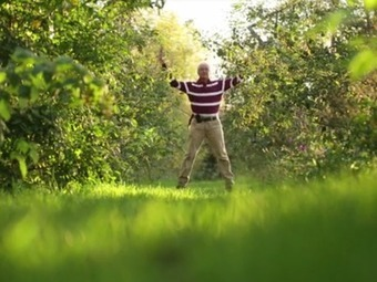 Transforming a conventional orchard into a fruit forest | Sustainable Futures | Scoop.it