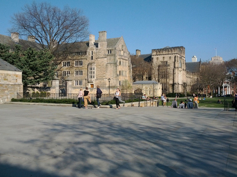 How College Could Actually Teach You Something | Thought Catalog | Andy - Colleges | Scoop.it