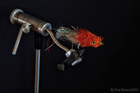 Fly Fishing an Outdoor Art | camtistic | Scoop.it