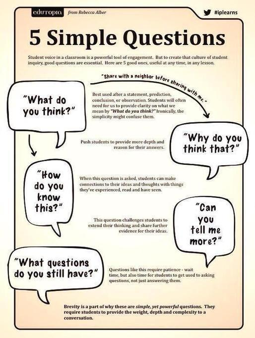 critical reading questions critical thinking questions