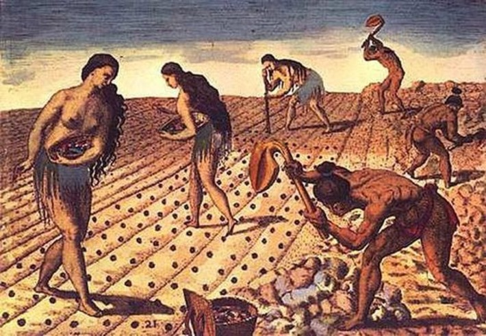 Population boom preceded early farming in North America | Archaeology News Network | Kiosque du monde : Amériques | Scoop.it
