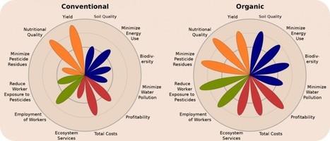 Biologische landbouw kan de wereld voeden - MergenMetz | Anders en beter | Scoop.it