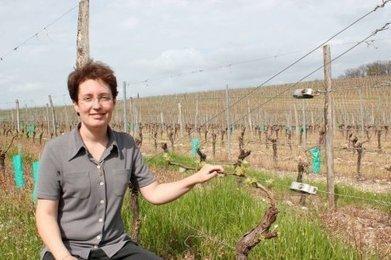 Laurence Rival, engagée en toute indépendance | Agriculture en Dordogne | Scoop.it