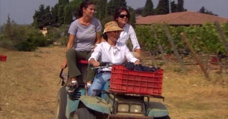 All in the Family... | Vitabella Wine Daily Gossip | Scoop.it