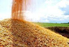 US: Corn export potential to Cuba is huge   MAIZE   Scoop.it