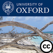 The New Psychology of Depression - Download free content from Oxford University on iTunes | Positive Psychology and Chronic Illness | Scoop.it