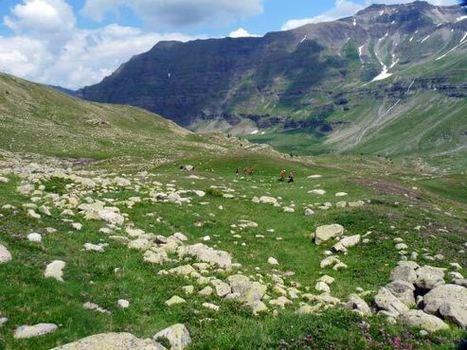 Il ya 8000 ans, les sommets alpins étaient habités - Journal de la Science | Mégalithismes | Scoop.it