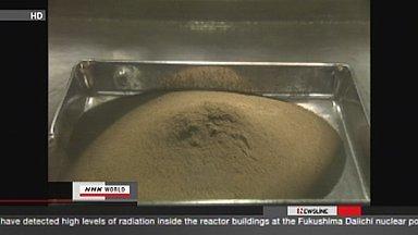 [Eng] Tepco vérifie le plutonium dans les fonds marins | NHK WORLD English (+vidéo) | Japon : séisme, tsunami & conséquences | Scoop.it