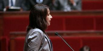 Logement: le projet de loi Duflot adopté en première lecture | investir à Toulouse | Scoop.it