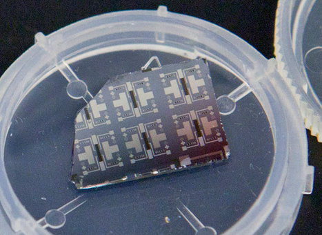 Harvard scientists invent the synaptic transistor that learns while it computes | Eudaimonia | Scoop.it
