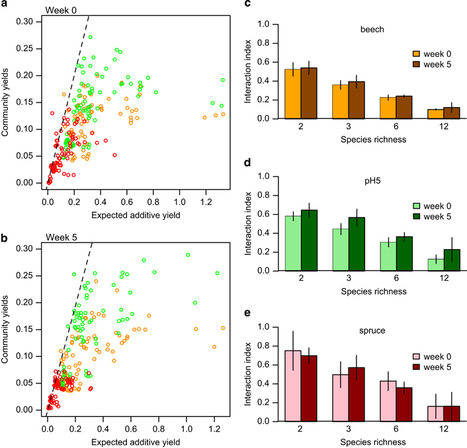 Evolution of species interactions determines microbial community productivity in new environments | Molecular Biology and Life Science | Scoop.it