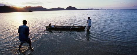 Photo par nature, concours organisé par National Geographic Channel et le Muséum national d'Histoire naturelle | Revue de Web par ClC | Scoop.it