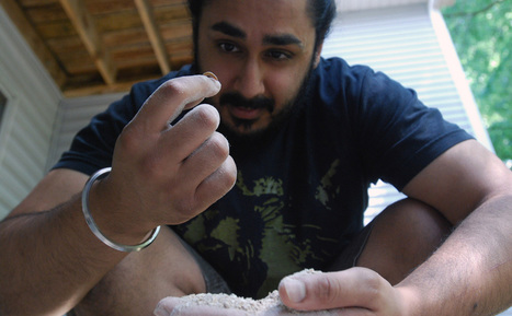 Meal Worms: Apartment Bug Farm Is Big Business - Modern Farmer | Food Culture Community | Scoop.it