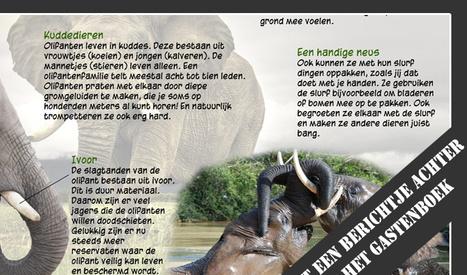 Taakkaarten.nl   Handig in de klas   Scoop.it