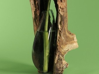 Designer Creates Nature-Inspired Glassblowing Molds Using Tree Trunks (Video) | Vertical Farm - Food Factory | Scoop.it
