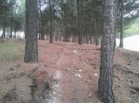 el ventano: Ciclistas sospechan que las trampas puestas en sus rutas de montaña en Valladolid son obra de cazadores   Valores del Deporte   Scoop.it