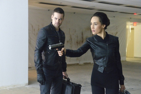 The CW Renews Nikita and The Carrie Diaries | TVFiends Daily | Scoop.it