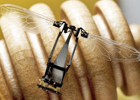 Científicos de Harvard crean abejas-robot polinizadoras | Varroosis | Scoop.it