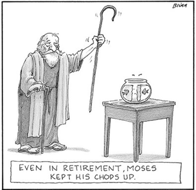 keeping active during retirement | The Reformed Broker | Your Retirement Blueprint | Scoop.it