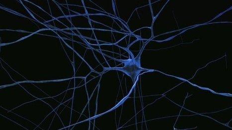 Billion pound brain project under way   Digital health, Quantified Self, Patient Empowerment, Digital Life, Cool Technology, Big Data   Scoop.it