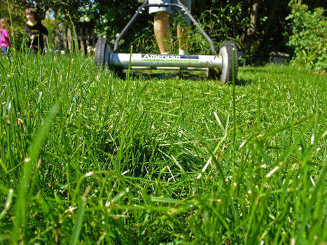Reframing My Lawn (or Marketing Spin in Suburbia) | Change Communication | Scoop.it
