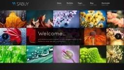 10 Stunning Wordpress Templates for Photographers   frankstelzerphotography   Scoop.it