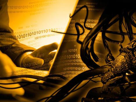 Data theft rises sharply, insiders to blame | ZDNet | LifeBank | Scoop.it