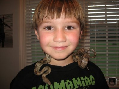 """How to Pick Up and Hold a Snake 