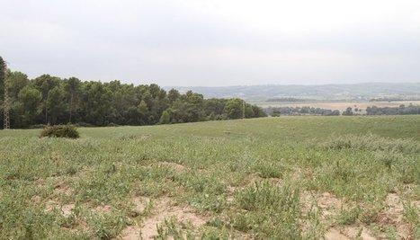 Foment només destina un milió al quart cinturó entre Terrassa i Granollers | #territori | Scoop.it