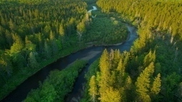 Nature Conservancy protects vital salmon habitat with N.B. reserve | Nova Scotia Fishing | Scoop.it