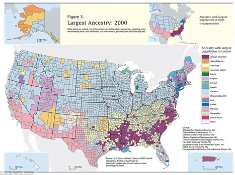 The Diverse Ancestry Of The United States | History:Why use a textbook? | Scoop.it