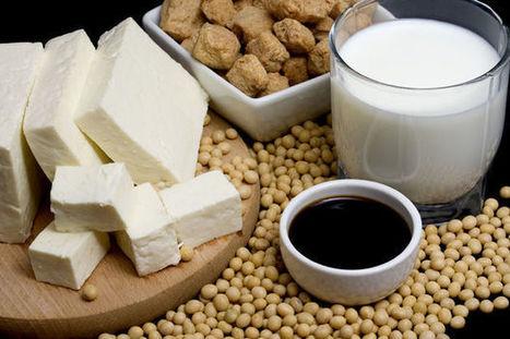 Le soja, bon pour la santé ou cancérigène? | Toxique, soyons vigilant ! | Scoop.it