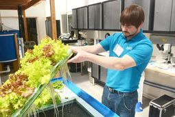 UW-Stevens Point opens aquaponics center in Montello - Madison.com | Aquaponics in Action | Scoop.it