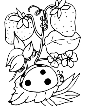 Insects Coloring Pages - Colouring for Kids | Coloring pages | Scoop.it