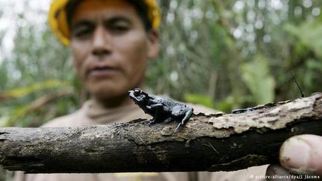 Repeated oil spills threaten Peru's Amazon | Environment | DW.COM | 30.09.2016 | Farming, Forests, Water, Fishing and Environment | Scoop.it