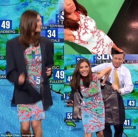 Meteorologist saved from wardrobe malfunction thanks to her co-worker | Social Studies Education | Scoop.it