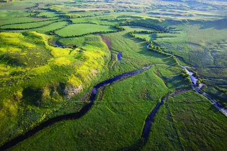 Oglala Lakota Tribe Calls On Tribes to Oppose Otter Creek Coal Mine | Climate and Vegetation | Scoop.it