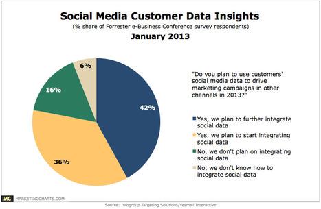Customer Insights Via Social Media [CHART] | My Social Recruitment | Scoop.it