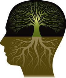 The Five Secrets of Brain Health | Mind-Body-Shift | Scoop.it
